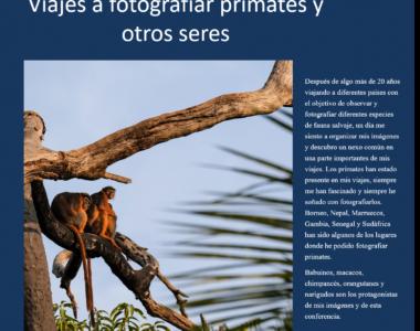 24.10.2019. Primates y otros seres