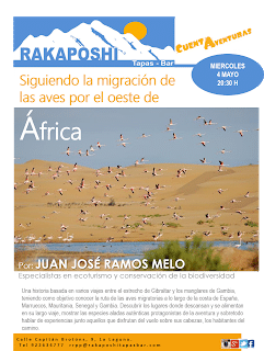 4 de mayo 2016. inmigración de las aves en el este de África.Juan Jose Ramos Melo